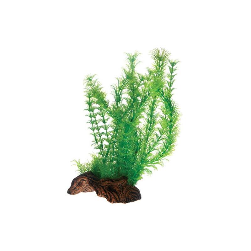 Planter på rod 30cm - root 3 L