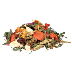 Natural food mixture for bearded dragons, 100 g