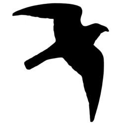 Klistermærker m. Rovfugl 17cm