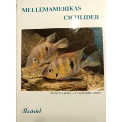 Mellemamerikas Cichlider - Benny - Ingemann