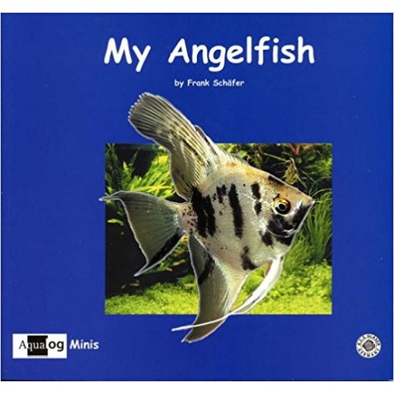AQUALOG Mini - My Angelfish