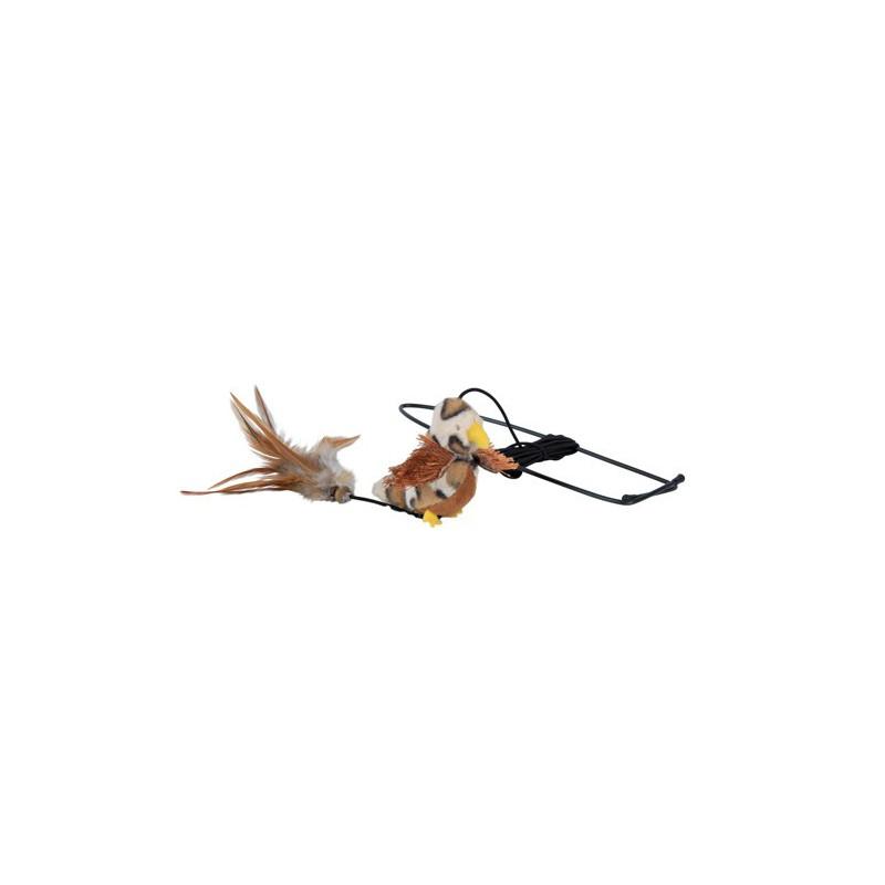 Fugl Med Elastik Til Dørkarme