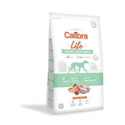 Calibra JUNIOR LARGE kylling/ris 12 kg